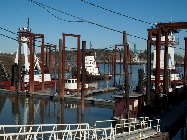 Tugs at Shaver Transportation assist with getting ships into and out of Port safely and moving barges up and down the river.