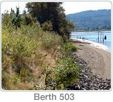 Mitigation Berth503