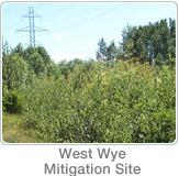 West Wye