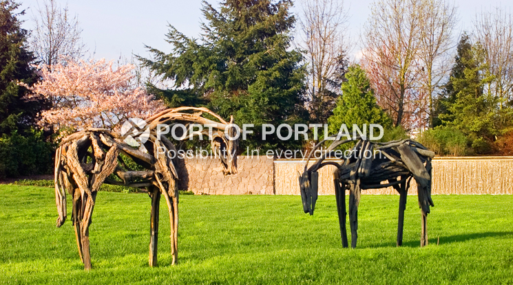 Artist Deborah Butterfield's horse exhibit along Airport Way has become a main attraction at PDX. The three sculptures, Princess Pine, Silverfork and Lyon, are made from wood, covered with plaster and burned out. The hollow wood was filled with molten bronze and welded together to create the three horse sculptures. This exhibit exemplifies the Port of Portland's commitment to showcasing a variety of artwork through ongoing relationships with regional artists and art organizations to illustrate the dynamic culture of the Pacific Northwest.