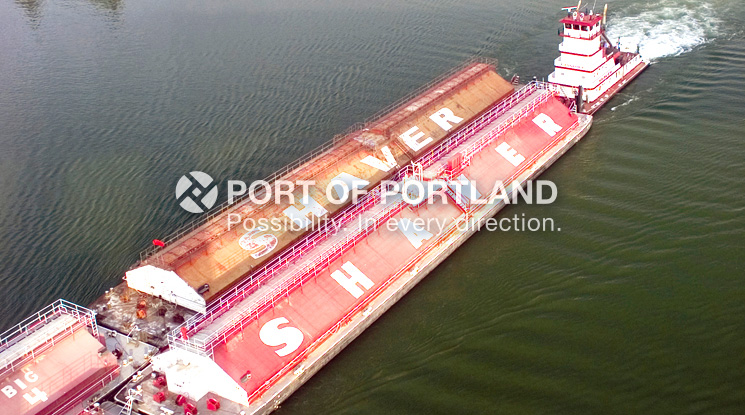 A Shaver tug pushes barges loaded with grain down the Columbia River for export overseas.