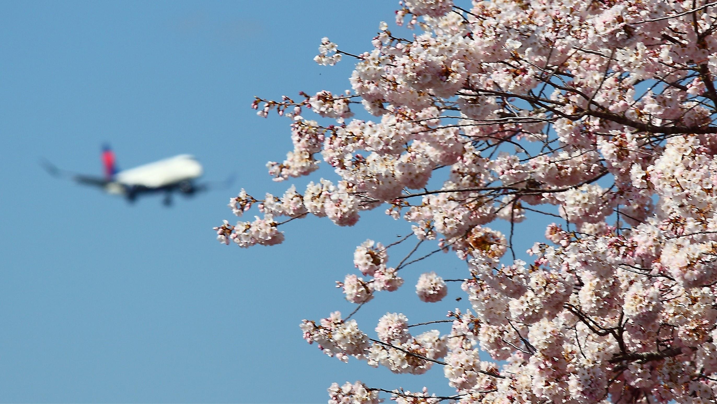Spring Break Brings Gradual Return to Travel, Changes at PDX